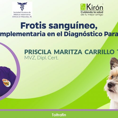 Frotis sanguíneo, prueba complementaria en el Diagnóstico Parasitológico