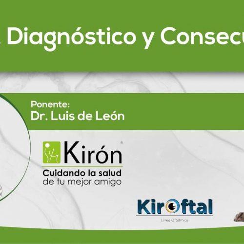Uveítis, Diagnóstico y Consecuencias